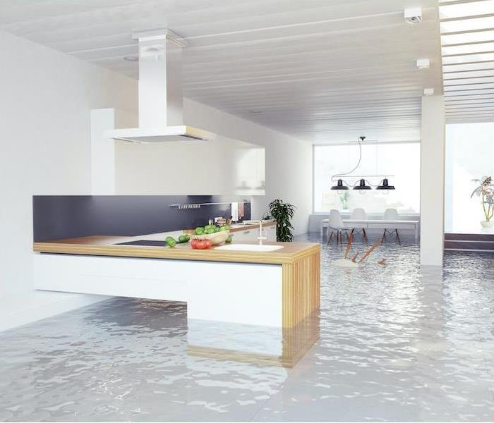 Standing water in a modern kitchen.