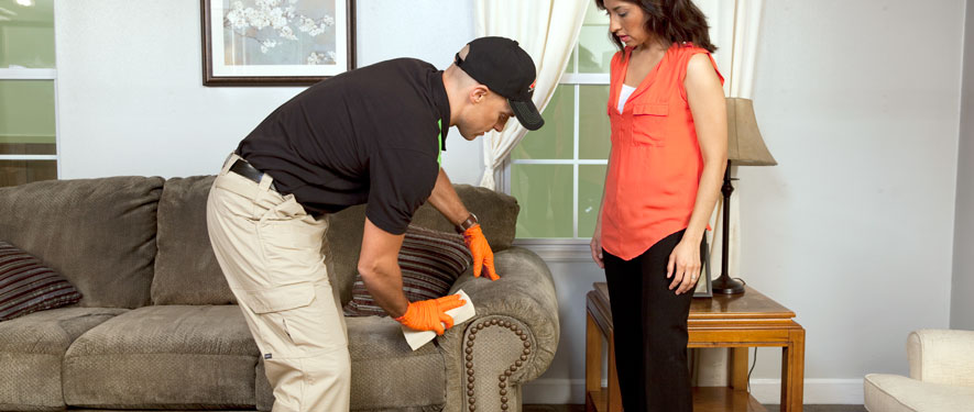 Santa Monica, CA carpet upholstery cleaning